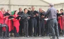 Geelong chorale pako festa 2015 (2)